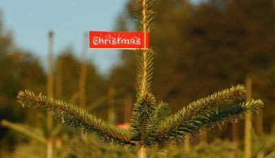 christmas-991807_640