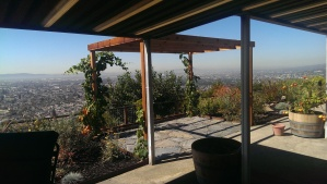 The pergola, before it turned into a sukkah.