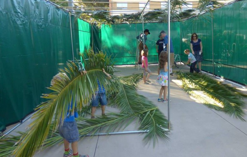 "Dreaming of a ""Someday Sukkah"""