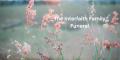 InterfaithFuneral