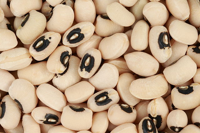 Black Eyed Peas: Not Just a Band!