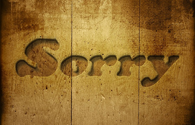 The Art of the Good Apology