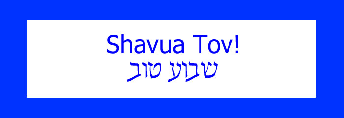 "What's ""Shavua Tov""?"
