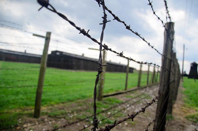 MajdanekFence