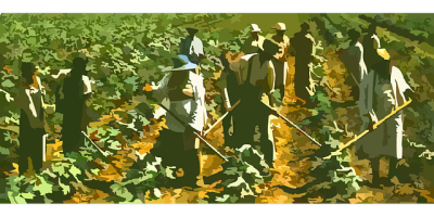 farming-42133_640