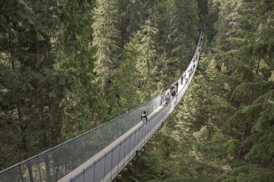 capilano-suspension-bridge-1393076_640